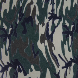 Army Camouflage 645