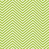1619 Light green chevron