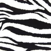 622 Zebra